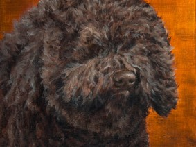Barbet Puppy Painting