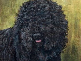 Barbet Painting