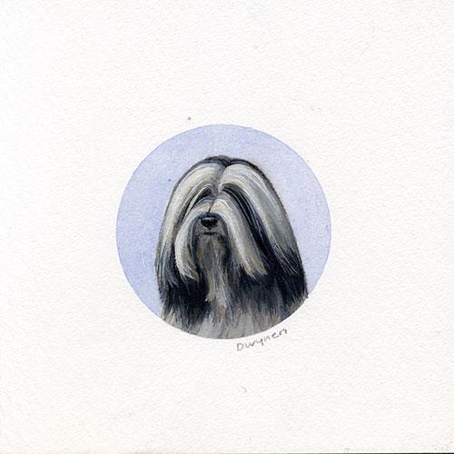 Tibetan Terrier painting