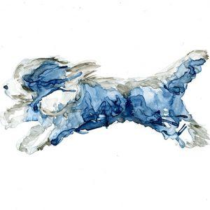 Running Blue Bearded Collie (Beardie) Painting