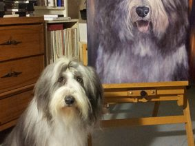 Bearded Collie posing with painting