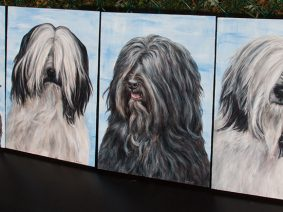 Tibetan Terrier Paintings