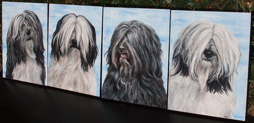 Tibetan Terrier Paintings