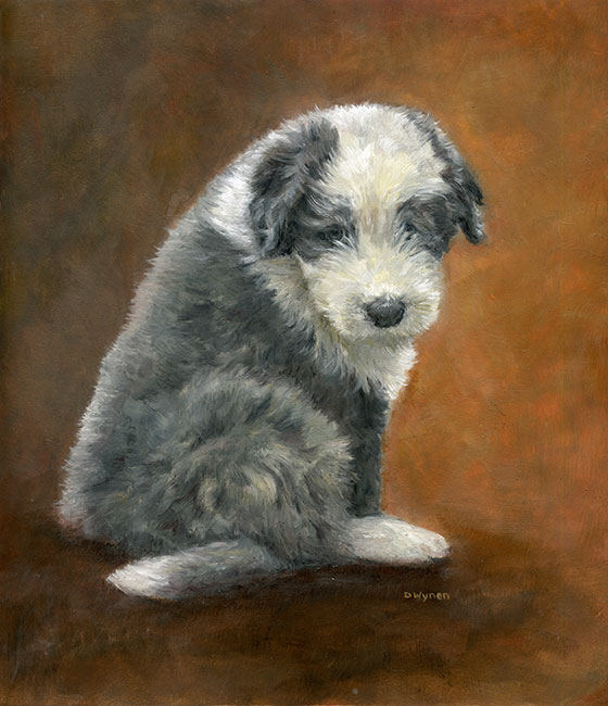 Bearded Collie (Beardie) Puppy Painting