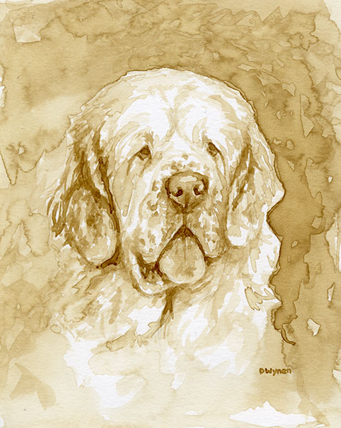 Clumber Spaniel Coffee Painting