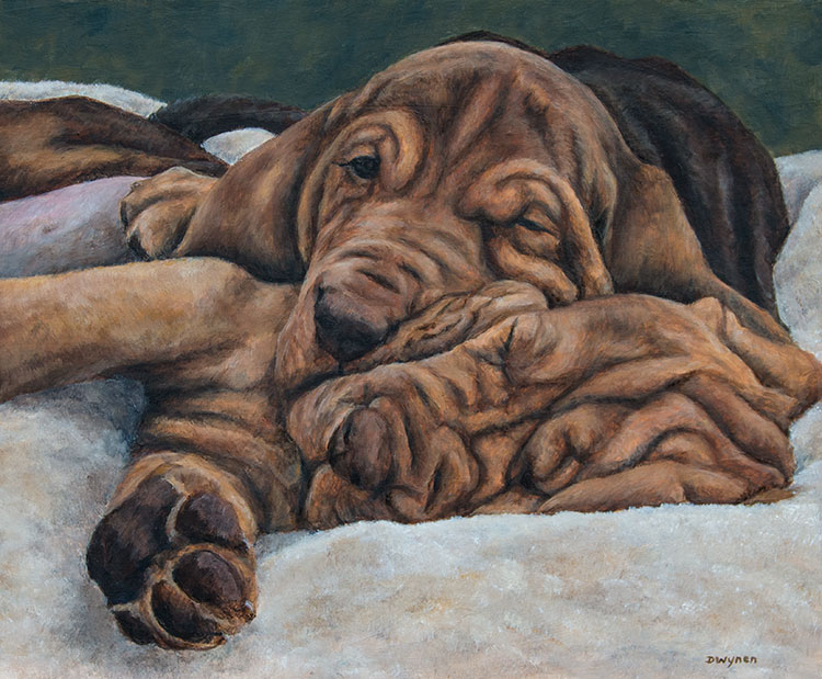 Bloodhound painting