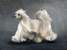 Chinese Crested Painting