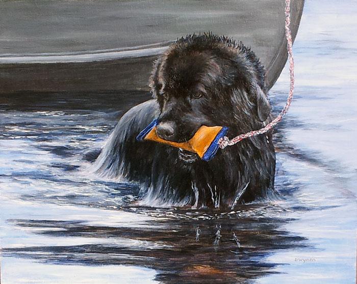 Newfoundland Dog (Newfie) Painting