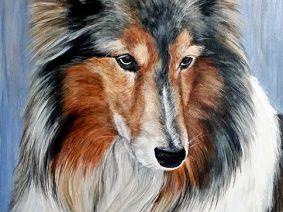 Shetland Sheepdog (Sheltie) painting