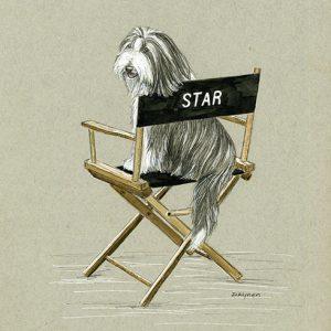 Day8Star