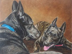 Dutch Shepherd painting