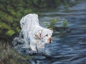 Clumber Spaniel Painting